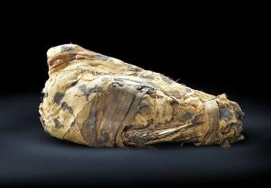 Animales sagrados del antiguo egipto