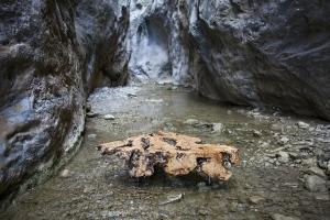 Jordi Piqué, mobiliario realizado con madera de olivos centenarios