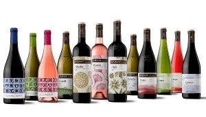 RAIMAT, el viñedo ecológico más importante del país