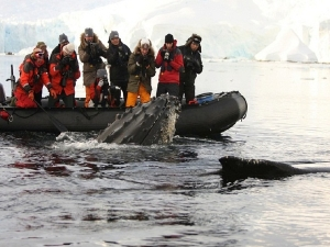 Viajes a la antartida